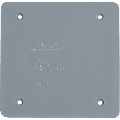 Picture of Carlon 2-Gang Blank 4 In. x 4 In. Square Blank Cover