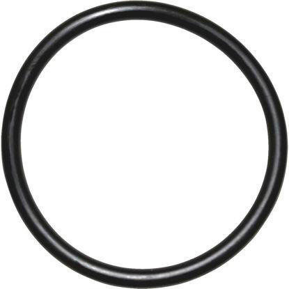 Picture of Danco #25 1-5/16 In. x 1-1/2 In. Buna-N O-Ring