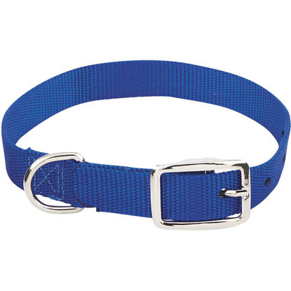 Picture of Westminster Pet Ruffin' it Adjustable 18 In. Nylon Dog Collar