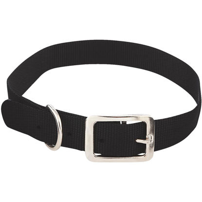 Picture of Westminster Pet Ruffin' it Adjustable 24 In. Nylon Dog Collar