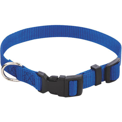 Picture of Westminster Pet Ruffin' it Adjustable 10 In. to 16 In. Nylon Dog Collar