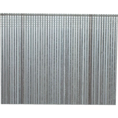Picture of Porter Cable 16-Gauge Galvanized Straight Finish Nail, 2 In. (2500 Ct.)