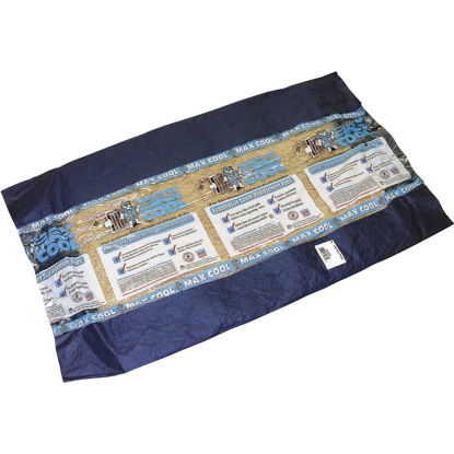 Picture of Dial Aspen 20 In. x 22 In. Long Strand Excelsior Evap Cooler Pad