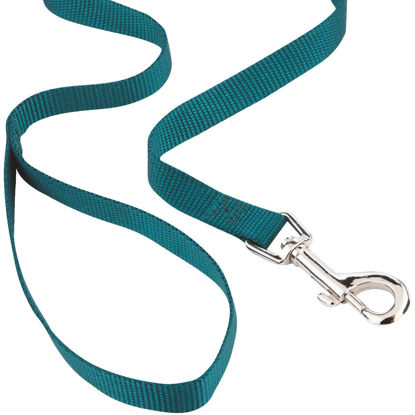 Picture of Westminster Pet Ruffin' it 4 Ft. Turquoise Nylon Dog Leash