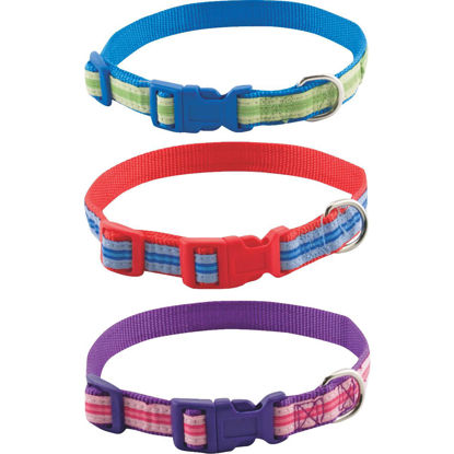 Picture of Westminster Pet Ruffin' it Adjustable 10 In. to 16 In. Highland Dog Collar
