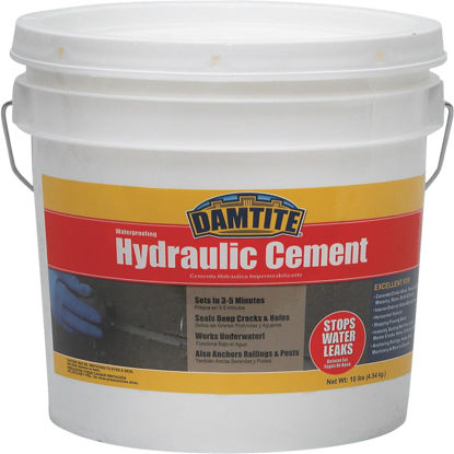 Picture of Damtite 12 Lb Pail Hydraulic Cement