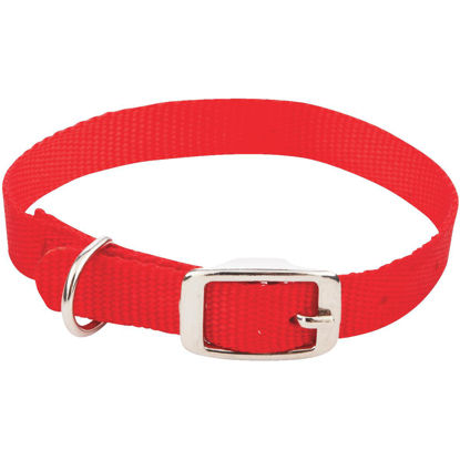 Picture of Westminster Pet Ruffin' it Adjustable 16 In. Nylon Dog Collar