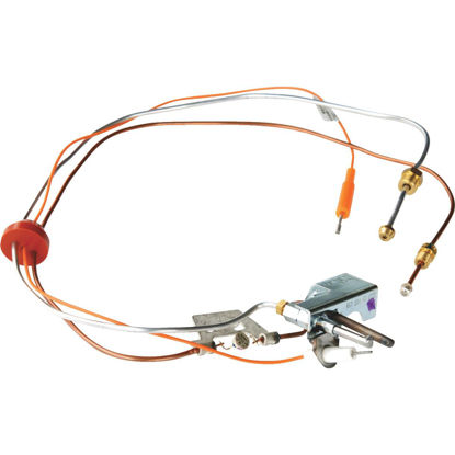 Picture of Reliance 190 F Liquid Propane (LP) Pilot Assembly