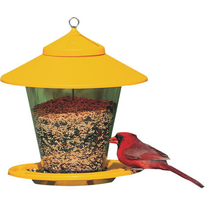 Picture of Cherry Valley Plastic Hopper Bird Feeder, 4 Lb.