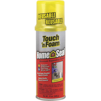 Picture of Touch 'n Foam Home Seal 12 Oz. Foam Sealant