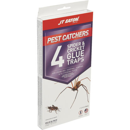 Picture of JT Eaton Pest Catchers Indoor Glue Cricket & Spider Trap (4-Pack)