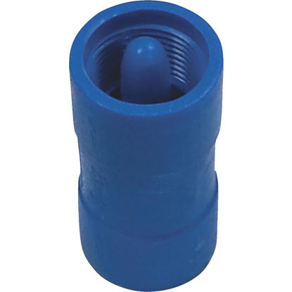 Picture of Campbell Brady 3/4 In. Acetal Polymer Spring Loaded Check Valve