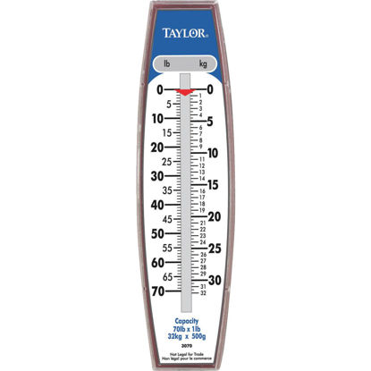 Picture of Taylor 70 Lb. Capacity Steel Hook Hanging Scale
