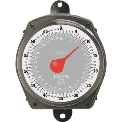 Picture of Taylor 70 Lb. Capacity Dial Hanging Scale