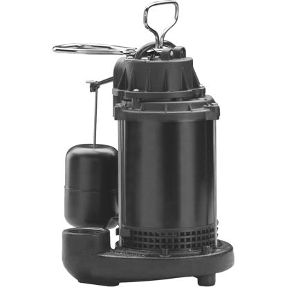 Picture of Wayne Water System 1/3 HP 115V Cast-Iron Submersible Sump Pump