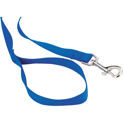 Picture of Westminster Pet Ruffin' it 6 Ft. Nylon Dog Leash