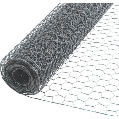 Picture of 1/2 In. x 36 In. H. x 25 Ft. L. Hexagonal Wire Poultry Netting