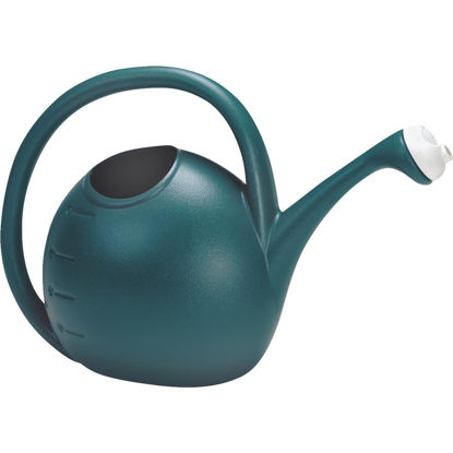 Picture of Akro Mills 2 Gal. Greenish Blue Poly Watering Can