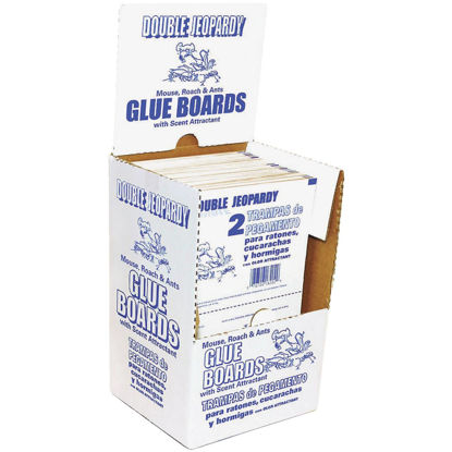 Picture of JT Eaton Double Jeopardy Banana Scented Glue Mouse Trap (1-Pack)