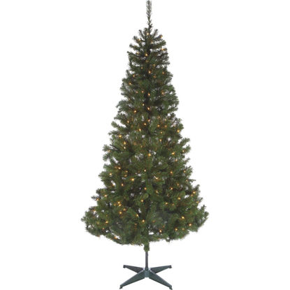 Picture of Sterling 7 Ft. Cumberland 300-Bulb Clear Incandescent Prelit Artificial Christmas Tree