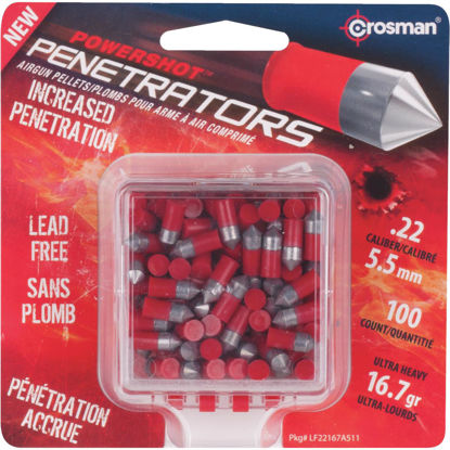 Picture of Crosman PowerShot Penetrators .22 Cal. Pointed 16.7 Grain Pellet Ammunition
