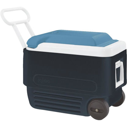 Picture of Igloo Maxcold 40 Qt. Roller Cooler, Blue