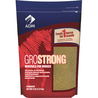 Picture of ADM GroStrong 5 Lb. Mineral Horse Feed Supplement
