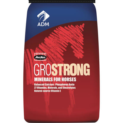 Picture of ADM GroStrong 25 Lb. Mineral Horse Feed Supplement