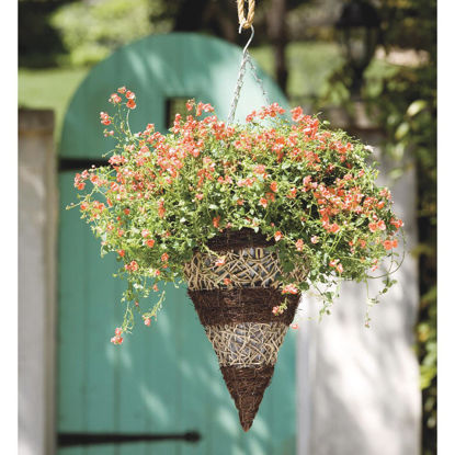 Picture of Gardman 14 In. Seagrass & Natural Grass Brown & Tan Hanging Plant Basket