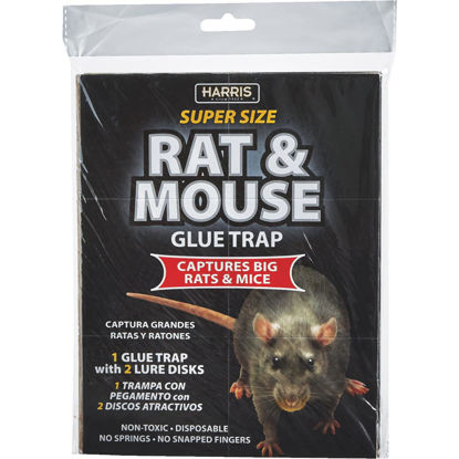 Picture of Harris Glue Rat & Mouse Trap