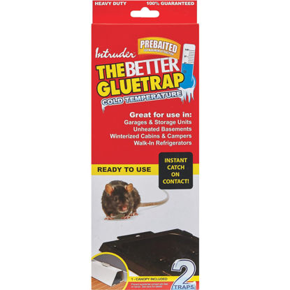 Picture of Intruder The Better Glue Trap Cold Temperature Rat Trap (2-Pack)